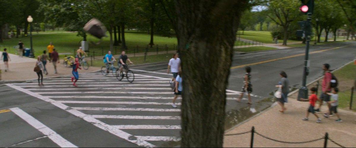 Crosswalk & Tree, Washington, DC | MCU: LocationScout