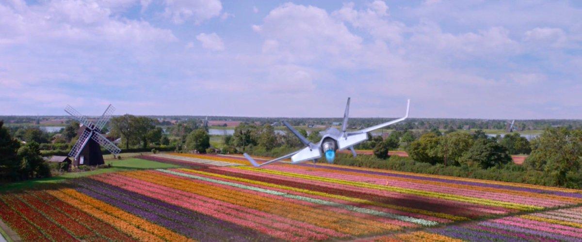 Tulip Field, Netherlands | MCU: LocationScout